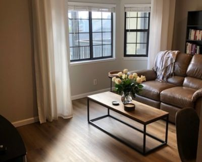 Room Available for student/ professional in 2bed/1bath apartment