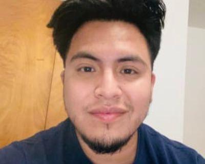 Misael, 26 years, Male - Looking in: Fairfax Fairfax city VA