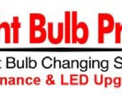 Light Bulb Pros