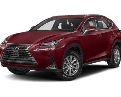 New 2021 Lexus NX NX 300 With Navigation & AWD