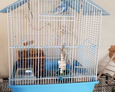 Bird cage with Accessories as shown