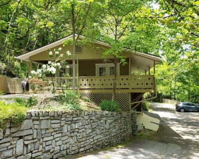 Lucerne Chalet - Treetop Mountain Views In Downtown Asheville, Dog Friendly, FP - Kenilworth