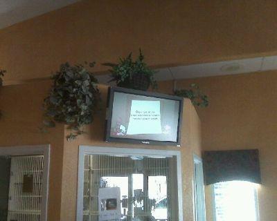 3D, TV, HDTV, LED, LCD, Wall Mount, Hang, Denver, Colorado