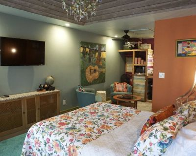 WIL- open, spotless home with 2 casitas - Fredericksburg