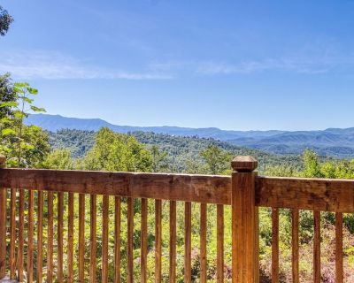 Parrots Nest/Beautiful Views across from Dollywood!!! - Pigeon Forge