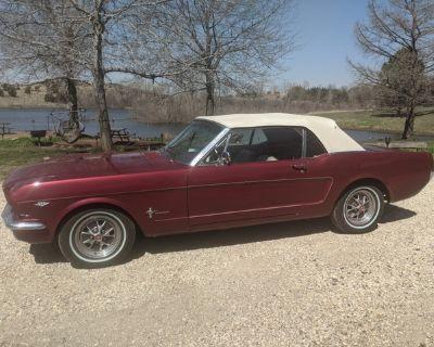 1966 mustang GT convertible antique car