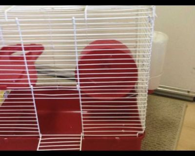 Small red pet cage