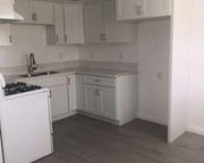 655 West 14th Street ##2, Los Angeles, CA 90731 1 Bedroom Apartment