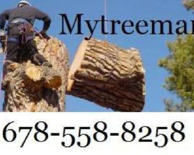 TREE SERVICE -TRIMMING -TREE REMOVAL Service 🌳🌲 (✅FREE ESTIMATES METRO ATLANTA💥)