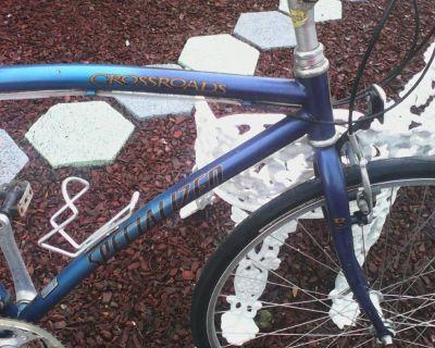 trek men's road bike  Alpha 1.1  Blue large Frame . new tires .