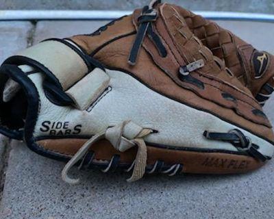 Softball Bag, Bats & Glove