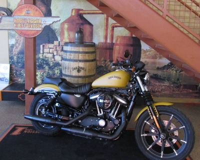 2019 Harley-Davidson Iron 883 Sportster Knoxville, TN