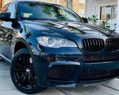 2011 BMW X6 M Standard