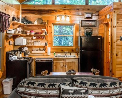 Cozy cabin with hot tub, fireplace, and seasonal pool access - Pigeon Forge