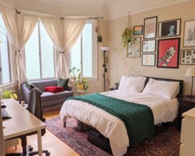 Beautiful room for rent November 1 through December 31, Mission, SF