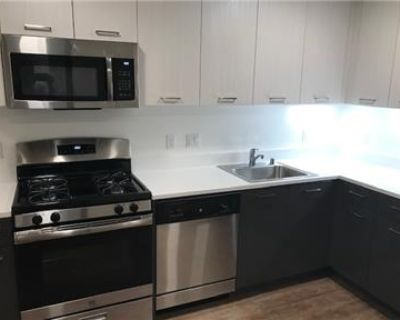5 month lease in Oakland - a real deal