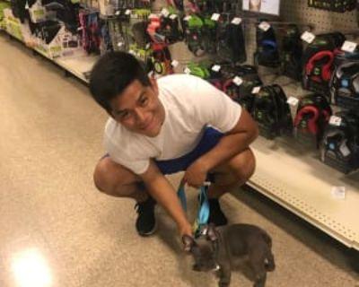 Oswaldo, 24 years, Male - Looking in: Santa Monica Los Angeles County CA