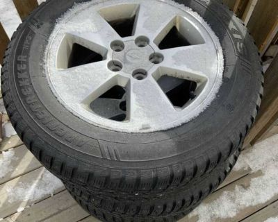 Studded Winter Tires (4)
