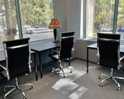 Private Office for 3 at The Muse Rooms