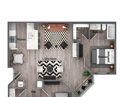Private Room/Bath in Chic Apartment