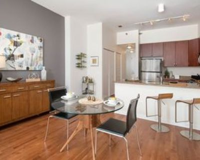 124 W Polk St #1612, Chicago, IL 60605 1 Bedroom Apartment