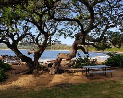 Absolutely gorgeous ~ Lae Nani 338 ~ ocean front luxury condo, Beautiful - Wailua