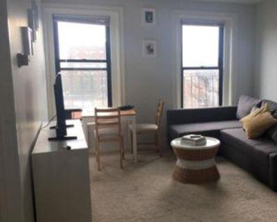 544 Columbus Avenue #8, Boston, MA 02118 1 Bedroom Apartment
