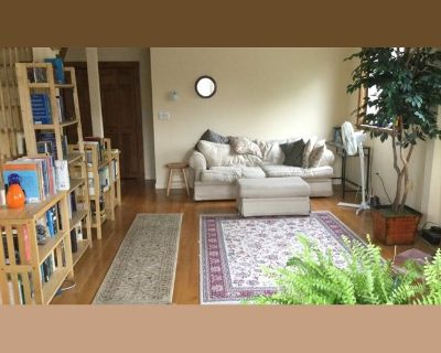 Room for rent in Massachusetts Avenue, North Cambridge - Super suite available now or Sept 1