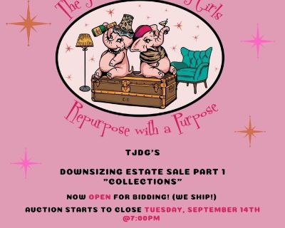"""TJDG's Downsizing Estate Sale Part 1 """"Collections"""""""