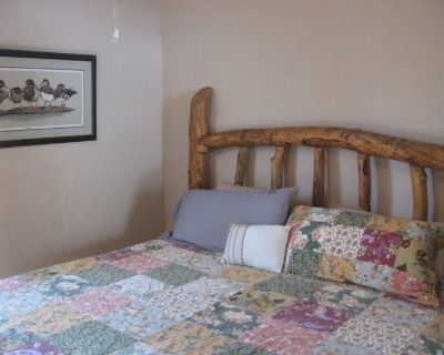 Sweet Retreat Bungalow 1880's with hiking, dog friendly and stocked kitchen - Twin Lakes