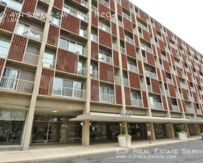 Spacious Studio Apartment For Rent In Southwest With Front Desk, Pool, Gym, & More!