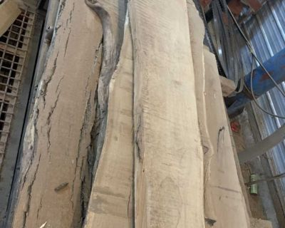 Live Edge Oak slabs, Kiln dried