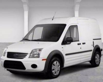 2013 Ford Transit Connect Van XL with rear door privacy glass