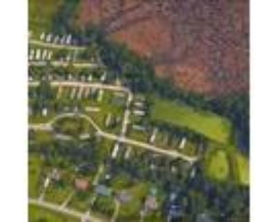 Collins Estate Value Add MHC! - for Sale in Piney Green, NC