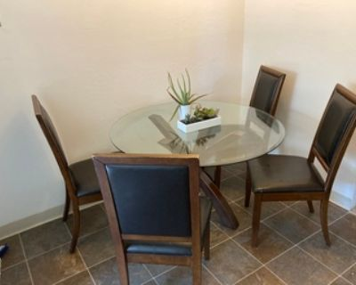 Glass Dining Table and 4 Chairs (+ Bonus Plants)