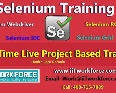 Selenium Real-time Project Workshop on Health care Domain by IIT Workforce.