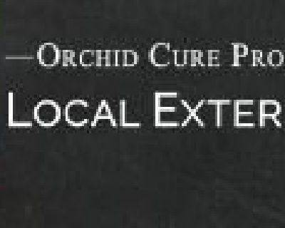 OCP Bed Bug Exterminator Boston MA - Bed Bug Removal