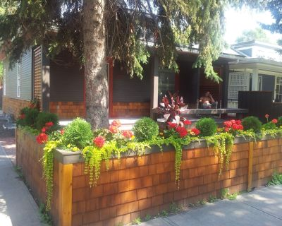 Urban Cottage Oasis, awesome location, fully renovated and self contained - Sunnyside