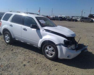 Salvage White 2010 Ford Escape