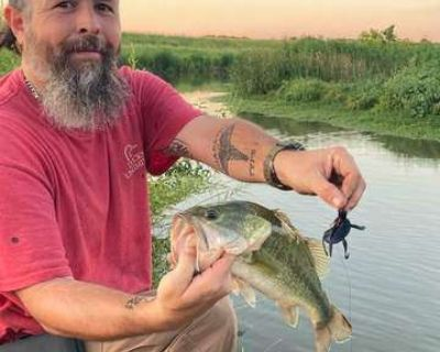Best Fishing Lure for Bass