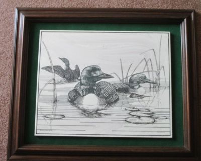 Loons - Ducks - Large Marble Etched Framed Picture