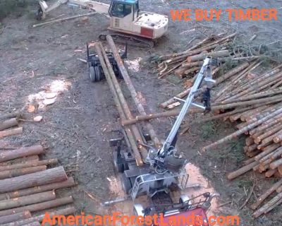Logging Company Log Timber Harvesting Washington Lewis County