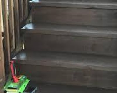 ANJ Local Deck Repair Exterior Power Washing and Cleaning
