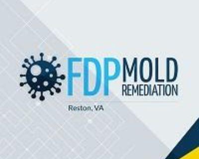 FDP Mold Remediation | Mold Remediation Reston