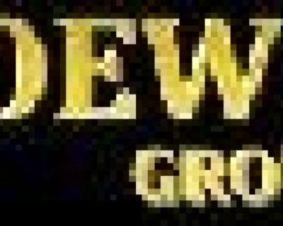Loew Law Group