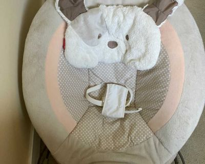 Fisher Price My Little Snugapuppy Bouncer