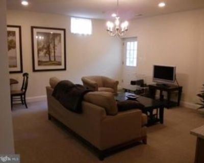 116 Crabb Ave, Rockville, MD 20850 1 Bedroom Apartment