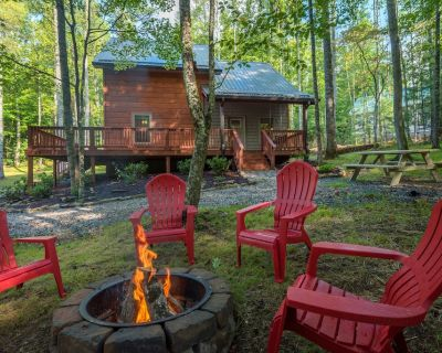 Remote Cabin nestled into the Forest w/Stream + Hiking and Waterfalls - Hampton