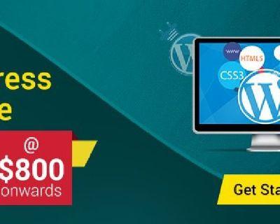 Hire custom wordpress development company in India