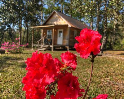 Cozy Waterfront Magnolia Cabin overlooking Red Creek! - Perkinston